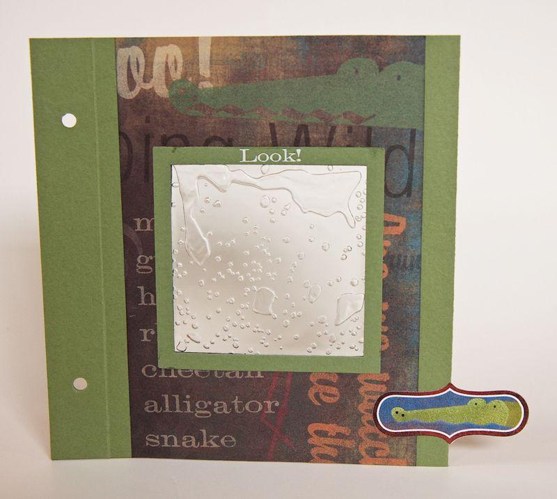 Zoo Album-8