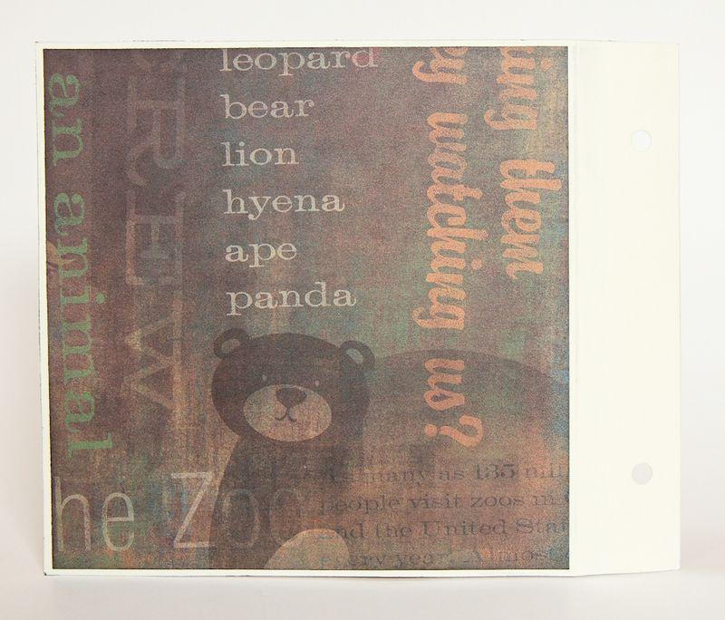 Zoo Album-11