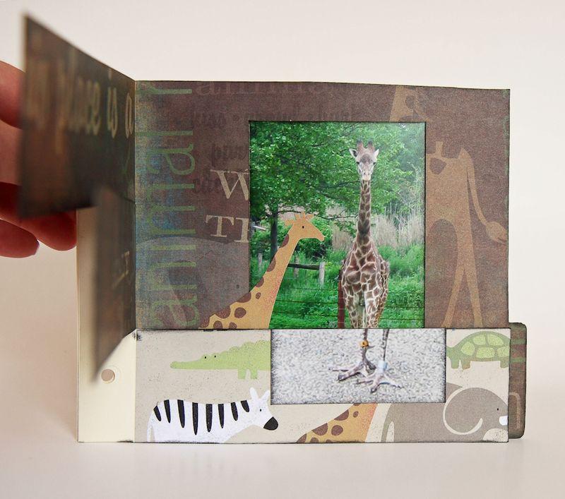 Zoo Album-18
