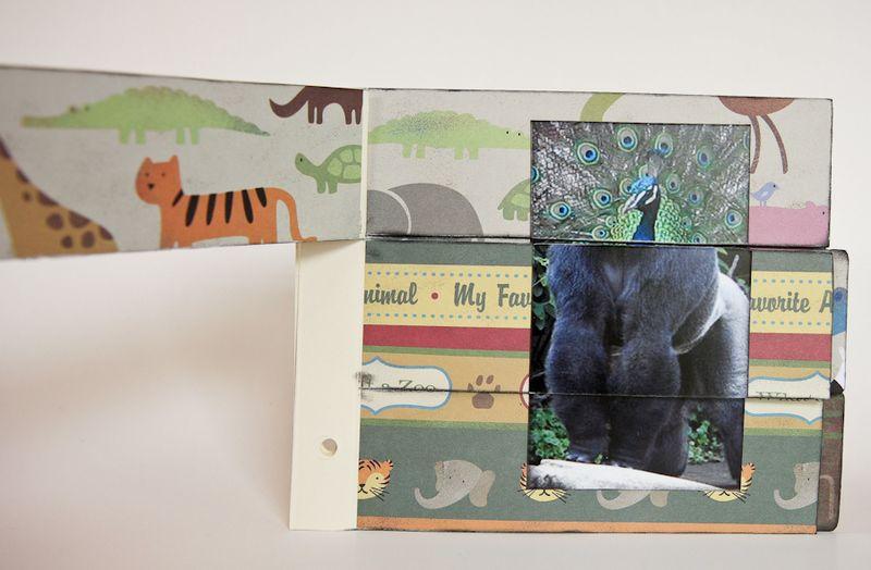 Zoo Album-17