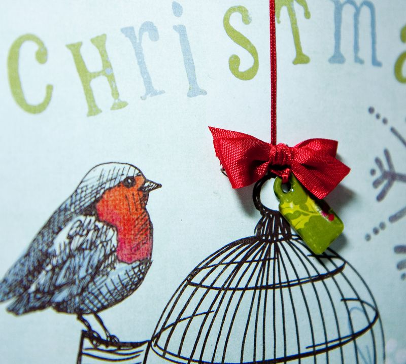 Birdcage Bag & Card-2