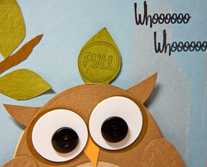 Owl Card-3