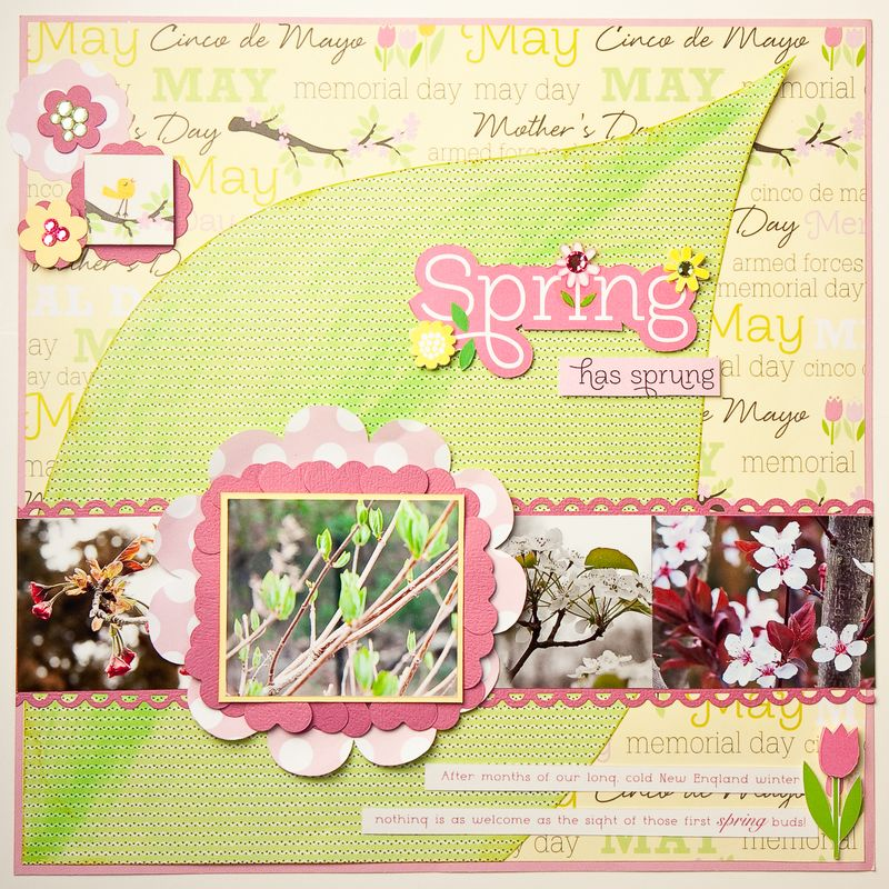 Spring layout-1