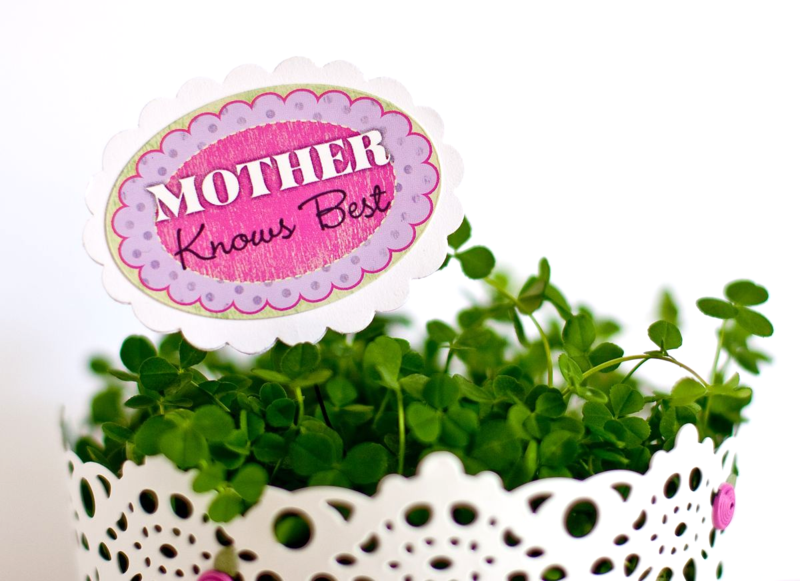 Mother's Day Cake Pop-2