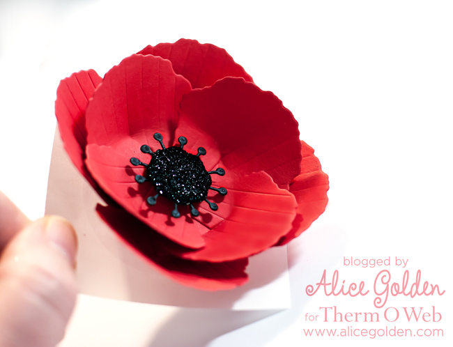 Alice-Golden-Therm-O-Web-Poppy-11