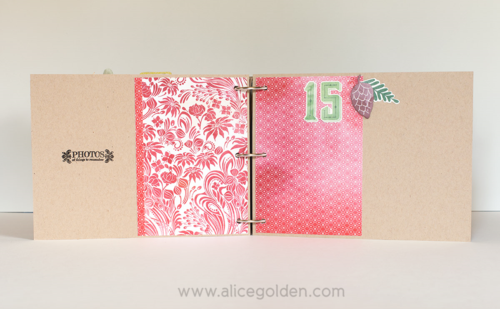 Alice-Golden-Days-of-December-15
