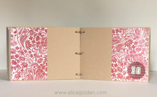 Alice-Golden-Days-of-December-30